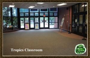 b-day Tropics Classroom2