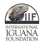 Iguana foundation