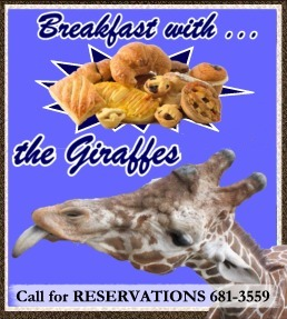 Small Breakfast with giraffes