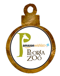 amazon wishlist ornament
