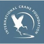 crane foundation