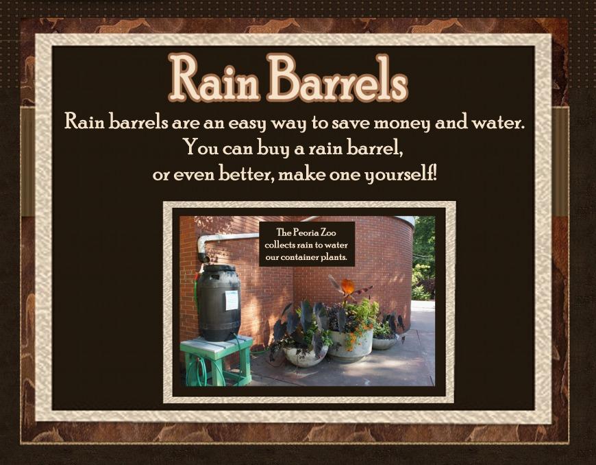 rain barrel for website