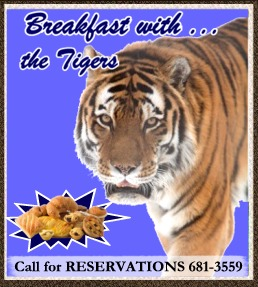 Small Breakfast with tigers