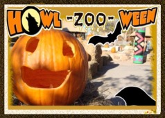 Image result for howl-zoo-ween