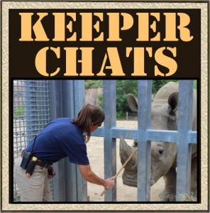 keeper_chats