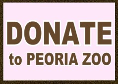 Donate to zoo giraffe