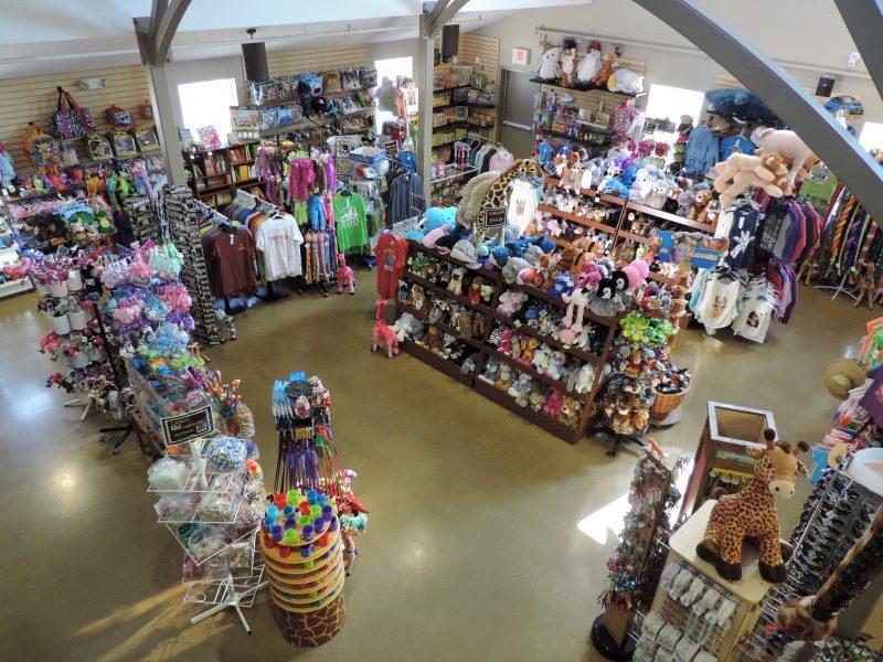 Gift Shop Slider 4