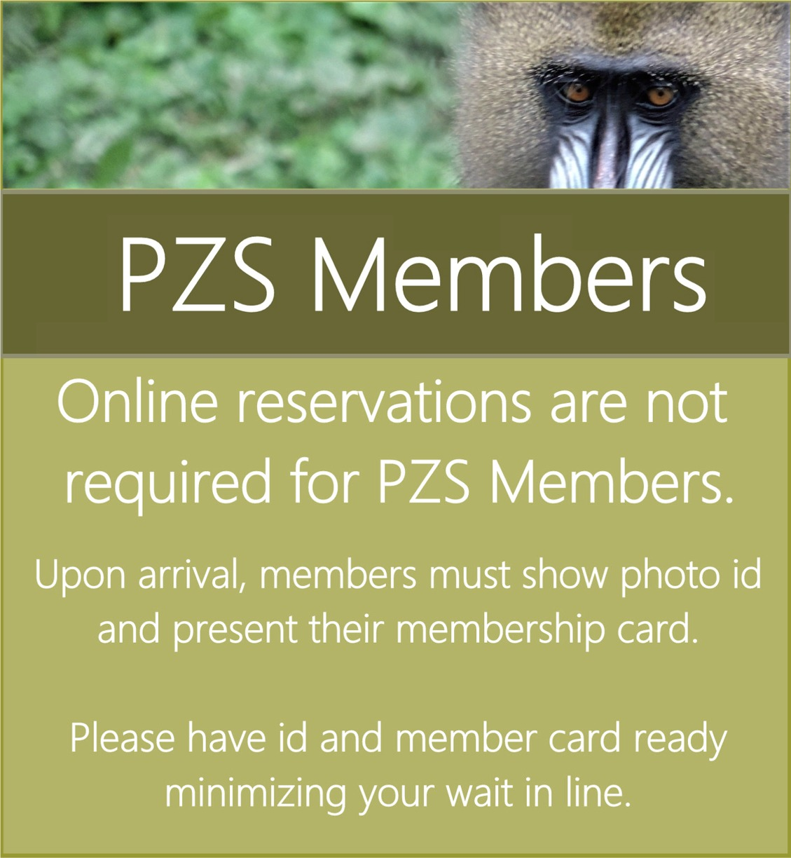 Member Ticket Page
